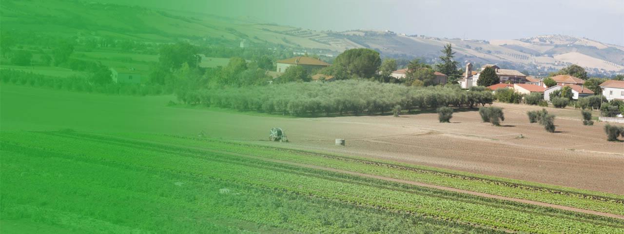 agricoltura-servizi