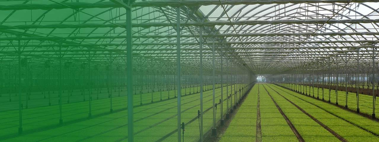 irrigazione-servizi